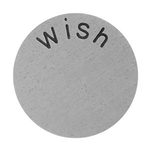 Picture of 'Wish' Large Silver Coin